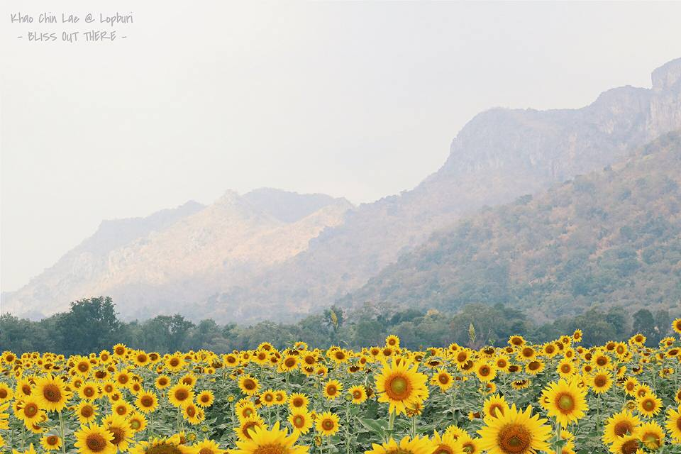 blissoutthere - ลพบุรี (23)