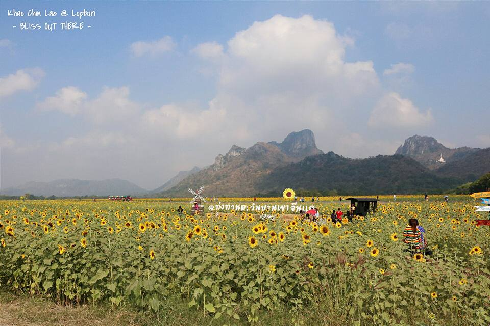blissoutthere - ลพบุรี (43)