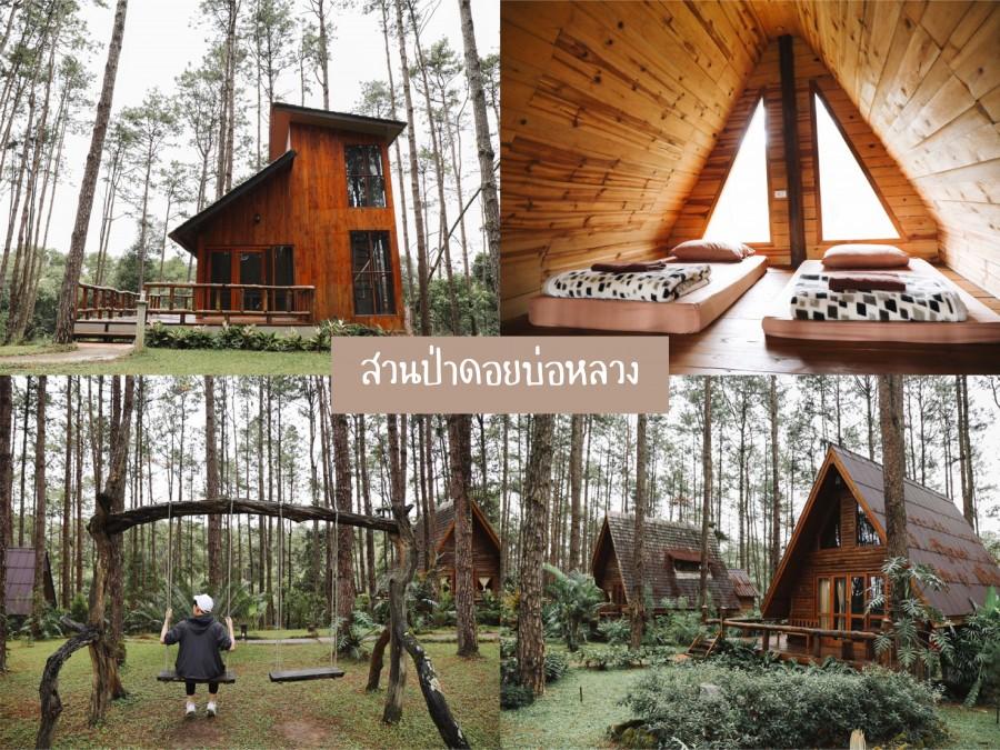 7 สวนป่าดอยบ่อหลวง เชียงใหม่-01